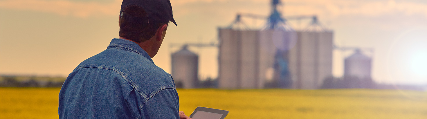 man standing in field looking at tablet
